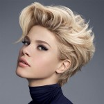 2015_Short_haircuts_Hairstyles_2015_New_Haircuts_and_Hair_Colors_form_Newest-Hairstyles.com_Saç_modelleri_Pinterest