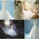Download_Disney_Princess_Wedding_Dresses_Cinderella_Images,_Free_Pictures_-_ImgYours.com