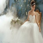 disney-princess-wedding-dresses-cinderella-picture-WeRB_The_Wedding_Design_Guide