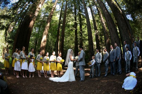 Yellow Bridesmaid Dresses Gray Suits 68