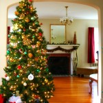 30_Beautiful_Christmas_Tree_Decorations_Ideas_2014_Flower_Meanings,_Pictures_and_Photos