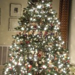 christmas_tree_decorating_ideas_pictures_2010_Decoration_And_Simply_Home_Interior_Design