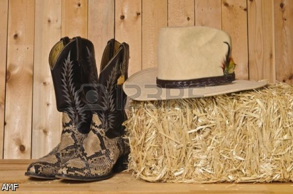 the gallery for gt cowgirl boots background