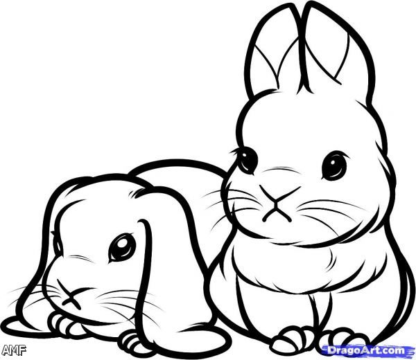 cute coloring pages of bunnies - photo#17
