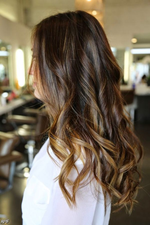 Dark Brown Hair With Blonde Highlights And Red Lowlights 2015-2016 ...
