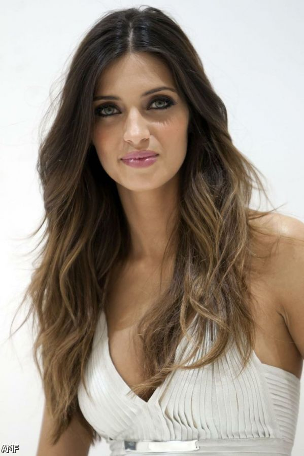 Gloominess Brown Whisker With Blonde Highlights Clarification Brown