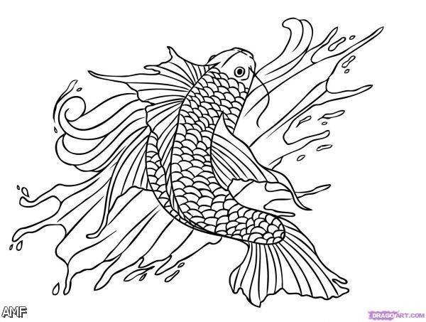 dragon fish coloring pages - photo#47