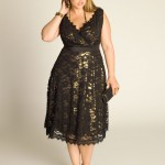 Black_Lace_Skater_Dress_Plus_Size_Dresses_Trend