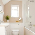 Small_Bathroom_Remodel_Ideas_The_Best_Home_Decor